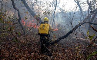 Εξακολουθούν να μαίνονται οι δασικές πυρκαγιές στον Αμαζόνιο, αφήνοντας πίσω τους καμένη γη.
