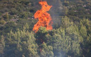 Φλόγες από την πυρκαγιά που ξέσπασε σε αγροτοδασική έκταση στον Δήμο Τανάγρας, την Παρασκευή 30 Αυγούστου 2019. Για την κατάσβεση επιχειρούν 52 πυροσβέστες με 23 οχήματα, 1 ομάδα πεζοπόρο τμήμα, 3 ελικόπτερο 2 αεροσκάφη και 2 αεροσκάφη πετζετέλ. ΑΠΕ ΜΠΕ/ΑΠΕ-ΜΠΕ/ Βασίλης Ασβεστόπουλος