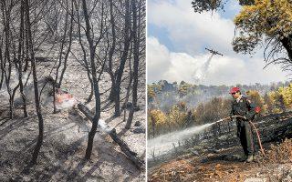 Η φωτιά ξεκίνησε στις 2.17 π.μ. από την περιοχή Λιβίσι και στην επιχείρηση κατάσβεσης έλαβαν μέρος πάνω από 100 πυροσβέστες με 44 οχήματα.