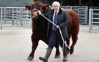 Η δύναμη της εικόνας. Ήξερε τι έκανε ο Μπόρις Τζόνσον όταν επισκέφθηκε την φάρμα Darnford και έκανε μια βόλτα για τους φωτογράφους έναν τεράστιο ταύρο. Ηθελε να δείξει την δύναμη και την αποφασιστικότητά του στις κρίσιμες στιγμές που περνά η Βρετανία. Andrew Milligan/Pool via REUTERS