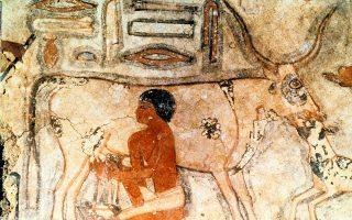 Τοιχογραφία που απεικονίζει στιγμιότυπο από την καθημερινή ζωή στην αρχαία Αίγυπτο.