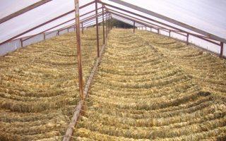 ependyseis-10-ekat-dol-apo-tin-japan-tobacco-sti-monada-tis-xanthis-2344076