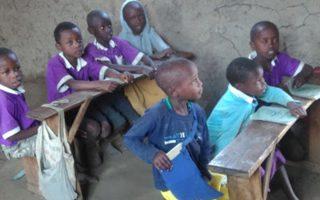 Εκπονήθηκαν προγράμματα ενισχυτικής διδασκαλίας για 60 εκατομμύρια παιδιά σε Ινδία και σε Αφρική.
