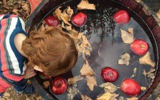 Δραστηριότητες και εδέσματα για μικρούς αλλά και για μεγάλους έχει προετοιμάσει το Κτήμα Κοκοτού, στη Σταμάτα, με την ευκαιρία της γιορτής του Αη Γιώργη του Μεθυστή.