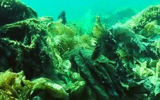 Η εικόνα του βυθού είναι απελπιστική από το 2011, όταν κατέρρευσε η μοναδική χωματερή του νησιού.