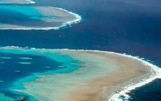 Το δηλητηριώδες μανιτάρι εντόπισαν επιστήμονες κοντά στον Μεγάλο Κοραλλιογενή Υφαλο.