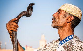 Ατρόμητος γητευτής φιδιών στην πολύβουη Τζεμάα Ελ-Φνα στο Μαρακές. (Φωτογραφία: Lutz Jaekel/laif)
