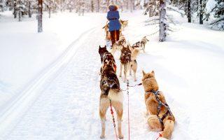 Βόλτα με έλκηθρο στη Φινλανδική Λαπωνία. (Φωτογραφία: VISUALHELLAS.GR)