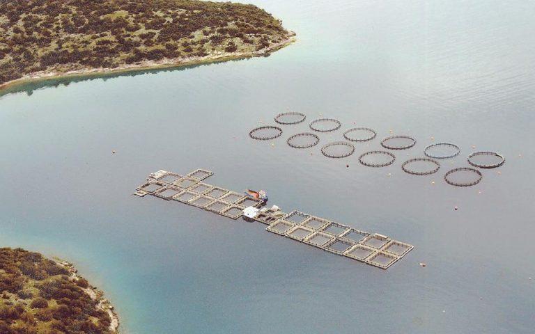 Πρόγραμμα ενίσχυσης παραγωγικών επενδύσεων στην υδατοκαλλιέργεια
