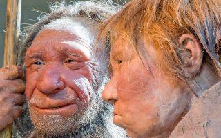 Αναπαράσταση άνδρα και γυναίκας Νεάντερταλ, από έκθεση του 2009 στο μουσείο της πόλης Μέτμαν, στη Γερμανία.