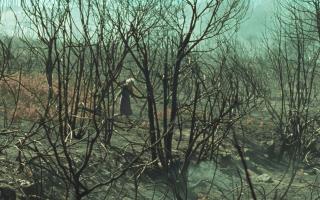 Στιγμιότυπο από την ταινία «Θα'ρθει η φωτιά»