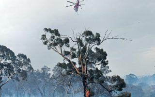 Δεκάδες πυρκαγιές μαίνονται εντελώς ανεξέλεγκτες σε ολόκληρη την Αυστραλία, που μαστίζεται από καύσωνα. Η κατάσταση στην πολιτεία της Βικτόρια είναι εφιαλτική και χιλιάδες άτομα αναγκάστηκαν να εγκαταλείψουν τις κατοικίες στο ανατολικό Τζίπσλαντ για να σωθούν από τις φλόγες. Ωστόσο, παρά την εθνική τραγωδία, στο Σίδνεϊ θα πραγματοποιηθεί το υπερθέαμα των πυροτεχνημάτων σήμερα τα μεσάνυχτα, παρότι χιλιάδες Αυστραλοί απαίτησαν να ματαιωθεί η εκδήλωση.