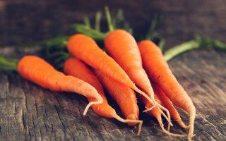 Σκληρά καρότα σε... εύθραυστα δόντια. SHUTTERSTOCK