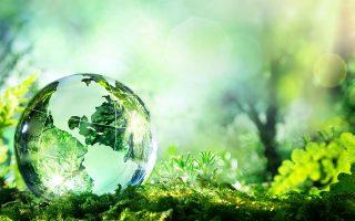 Οι πολιτικές για την κλιματική αλλαγή, την αειφορία, τη βιώσιμη ανάπτυξη απηχούν τις αυξανόμενες ανησυχίες μας για τη ζωή στη Γη. Η αειφορία εξελίσσεται σε μείζονα αρχή ύπαρξης της ανθρώπινης δραστηριότητας.
