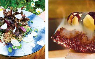 Ορισμένα από τα ευφάνταστα πιάτα του Ιμ Τζιχό. «Το φαγητό είναι τέχνη και ολιστική ιαματική επιστήμη», διαβάζει ο επισκέπτης στο εστιατόριο του σεφ, Sandang, στη Σεούλ.