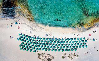 Η Χρυσή ή Γαϊδουρονήσι είναι ένας από τους σημαντικότερους οικοτόπους της Κρήτης, φιλοξενώντας το μεγαλύτερο φυσικά διαμορφωμένο κεδροδάσος της Ευρώπης. Ταυτόχρονα αντιμετωπίζει την επέλαση της τουριστικής εκμετάλλευσης.