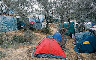 «Μονάχα στη Μόρια και στη γύρω περιοχή βρίσκονται 20.000 άνθρωποι, ενώ ο αριθμός αυτός αγγίζει τις 40.000 σε όλα τα νησιά υποδοχής», επισημαίνει στην «Κ» η διευθύντρια του IRC Hellas, Δήμητρα Καλογεροπούλου.
