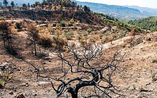 Καμένοι λόφοι από τις περυσινές φωτιές σε περιοχές της Καταλωνίας.