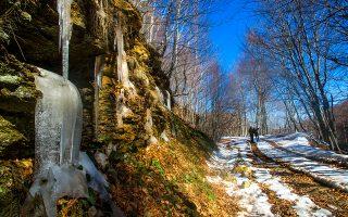 Στις χωμάτινες διαδρομές του Κισσάβου το καλοκαίρι βλέπεις πυκνά δάση και τον χειμώνα χιόνι και γλυπτά από πάγο. (Φωτογραφία: ΚΛΑΙΡΗ ΜΟΥΣΤΑΦΕΛΛΟΥ)