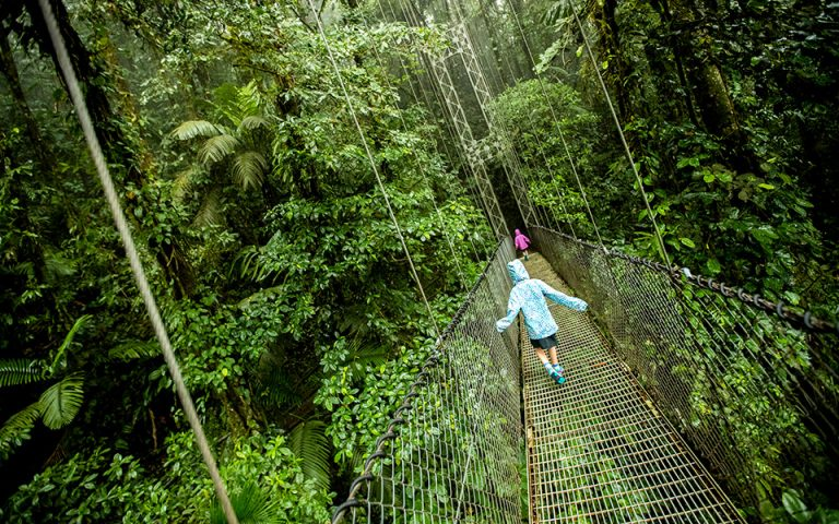 Περιήγηση στο τροπικό δάσος του Arenal, πάνω σε κρεμαστές γέφυρες. (Φωτογραφία: Shutterstock)