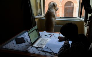 A dog looks out the window as a boy studies at home via video conference, as the spread of coronavirus disease (COVID-19) continues, in Rome, Italy, March 30, 2020. REUTERS/Alberto Lingria