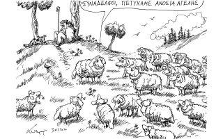 skitso-toy-andrea-petroylaki-31-03-200