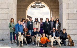 Μερικοί από τους εθελοντές του προγράμματος. © ΠΕΡΙΚΛΗΣ ΜΕΡΑΚΟΣ