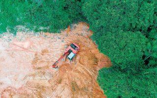 «Καθώς τα τροπικά δάση αποψιλώνονται με ανησυχητικό ρυθμό σε παγκόσμια κλίμακα, οι επιστήμονες φοβούνται ολοένα και περισσότερο ότι οι πανδημίες του μέλλοντος μπορεί να προέλθουν από την ανθρώπινη δραστηριότητα που καταστρέφει τα δάση», προειδοποιούσε πέρυσι άρθρο στο περιοδικό The Scientist.