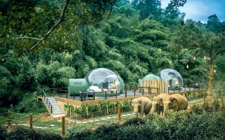Το Jungle Bubbles στο Anantara Golden Triangle Elephant Camp & Resort, στην Μπανγκόκ. © Anantara Hotels, Resorts & Spas via The New York Times