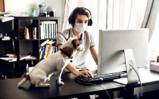 (Φωτογραφία: Shutterstock)