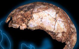 Το κρανίο ανήκε πιθανώς σε άτομο ηλικίας δύο έως τριών ετών όταν πέθανε