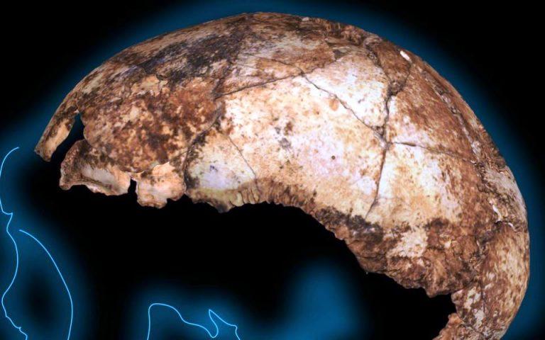 vrethike-to-archaiotero-kranio-homo-erectus-ston-kosmo-2372145