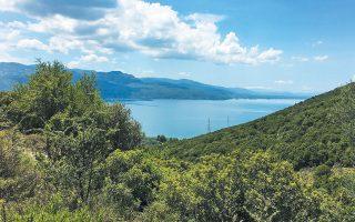 Η λίμνη Τριχωνίδα την άνοιξη: ο τόπος που γίνεται μνήμη και η μνήμη που γίνεται τόπος χωρίς χρόνο.