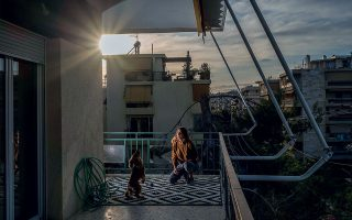 Απόγευμα στο Μαρούσι. Τα ζώα δεν στερήθηκαν τις βόλτες αυτές τις μέρες, αλλά χάρηκαν λίγο παραπάνω το «έξω» στα μπαλκόνια μας. ©Δημήτρης Μιχαλάκης