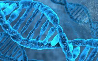 Η ανακάλυψη της δομής του DNA (Νομπέλ το 1962) είναι μια έρευνα περιέργειας, στην οποία οφείλει πολλά η Ιατρική. SHUTTERSTOCK