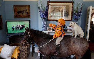 Κούρσα. Ζωντανά από την τηλεόραση παρακολουθεί ο μόλις τριών ετών Merlin Coles τις ιπποδρομίες του Ασκοτ. Ολα αυτά μέσα στο σπίτι του στο Dorset, καβάλα στον Mr Glitter Sparkles και παρέα με την σκυλίτσα του την Mistress. Τι άλλο να ζητήσει ένα παιδί;  REUTERS/Paul Childs