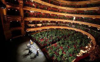 Η κατάρα των άδειων θέσεων. Δεν υπάρχει καλλιτέχνης που μπορεί να το αντέξει το θέαμα μπροστά του με τις άδειες καρέκλες. Γι αυτό και οι μουσικοί που έκαναν την πρόβα τους στο  Gran Teatre del Liceu της Βαρκελώνης το γέμισαν με γλάστρες με φυτά. Με αυτό τον τρόπο θέλησαν να ευαισθητοποιήσουν το κοινό, τώρα που ξεκινάνε οι παραστάσεις να έρθουν στο θέατρο.  REUTERS/Nacho Doce