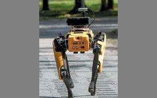 Ο «κίτρινος σκύλος» που χρησιμοποιήθηκε στα πάρκα της Σιγκαπούρης για να εντοπίζει όποιον παραβίαζε τους κανόνες κοινωνικής αποστασιοποίησης. (ΦΩΤ. REUTERS / EDGAR SU)