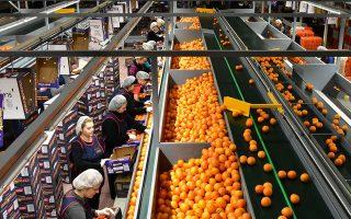 Η Ελλάδα είναι η μόνη ευρωπαϊκή χώρα της οποίας οι παραγγελίες τροφίμων από το εξωτερικό κατά το δίμηνο της πανδημίας σημείωσαν άνοδο, με τον δείκτη παραγγελιών εξαγωγών να φθάνει τις +13 μονάδες.