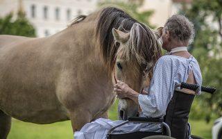 «Να σου πω κάτι που ξέρω». Η επαφή με τα ζώα κάνει καλό, το ίδιο και το γέλιο, οι στιγμές ηρεμίας, η επαφή με ανθρώπους που μας αγαπούν και τους αγαπάμε. Συμβουλές που τις γνωρίζουμε όλοι αλλά δεν προλαβαίνουμε... Στην φωτογραφία μια συνεδρία με άλογα για ασθενείς του νοσοκομείου Prague's Karel Boromejsky Sisters of Charity. Σύμφωνα με το ιατρικό προσωπικό η επαφή με τα εκπαιδευμένα άλογα βελτιώνει την ψυχική κατάσταση των ασθενών εξαιτίας των συναισθημάτων που αναπτύσσονται. EPA/MARTIN DIVISEK