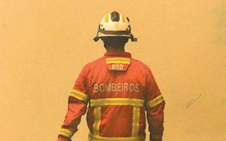 Χρειάστηκαν 800 πυροσβέστες προκειμένου να τεθεί υπό έλεγχο μεγάλη δασική πυρκαγιά.