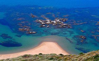 «Στις έξι παραλίες ωοτοκίας μέχρι και αυτή τη στιγμή δεν υπάρχουν έπιπλα θαλάσσης, ούτε μουσική ούτε φώτα, συνθήκες που δυσκόλευαν πολύ την καρέτα καρέτα», περιγράφει στην «Κ» η Χαρίκλεια Μινώτου, υπεύθυνη προγράμματος WWF Ελλάς (φωτογραφία: Χαρίκλεια Μινώτου/WWF Ελλάς).