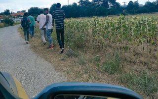 Μετανάστες φτάνουν διαρκώς στην Ειδομένη είτε ανεβαίνοντας κρυφά στα βαγόνια φορτηγών τρένων –με μεγάλο κίνδυνο για τη ζωή τους– είτε με τα πόδια, και περιμένουν κρυμμένοι στα χωράφια την ευκαιρία να περάσουν τα σύνορα.