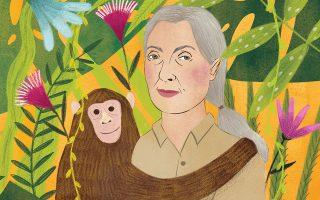 Η ζωολόγος και ανθρωπολόγος Τζέιν Γκούντολ πέρασε 55 χρόνια μελετώντας τη συμπεριφορά των χιμπαντζήδων.