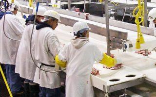 Η Intertrade ιδρύθηκε το 1992 με στόχο την πώληση jumbo rolls (επαγγελματικά ρολά χαρτιού μεγάλου μεγέθους) σε Ελληνες επεξεργαστές.