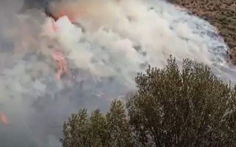 Πυρκαγιά στις Μυκήνες: Ενισχύθηκαν οι πυροσβεστικές δυνάμεις