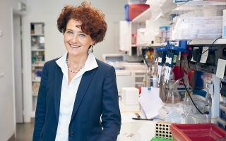 «Είμαι μισή Βρετανίδα, μισή Ελληνίδα, παντρεμένη με Γάλλο. Νιώθω πολύ Ευρωπαία. Πιστεύω στην Ευρώπη», λέει η Ιντιθ Χερντ, γενική διευθύντρια του Ευρωπαϊκού Εργαστηρίου Μοριακής Βιολογίας (EMBL) – του «CERN της Μοριακής Βιολογίας», όπως το αποκαλούν.