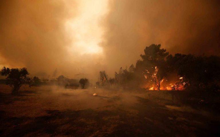 Πορτογαλία: Απουσία σχεδιασμού στην πρόληψη πυρκαγιών