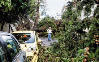 Τρεις τραυματίες, 150 ξεριζωμένα δέντρα, ζημιές σε τζαμαρίες και κεραμοσκεπές, κατεστραμμένες κολόνες της ΔΕΗ: ο απολογισμός από το πρωτοφανούς σφοδρότητας μπουρίνι που έπληξε χθες το πρωί το Νέο Ηράκλειο (φωτ. EPA / ALEXANDROS VLACHOS).