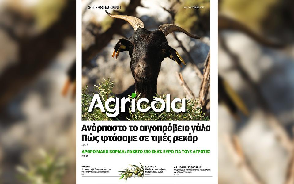 ayti-tin-kyriaki-me-tin-kathimerini-glykes-alchimeies-fotografiko-leykoma-1940-agricola-kapa-taxidia5